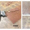 Case Study #2 BS-110 Flooring & Coating Removal
